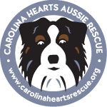 Carolina Hearts Aussie Rescue